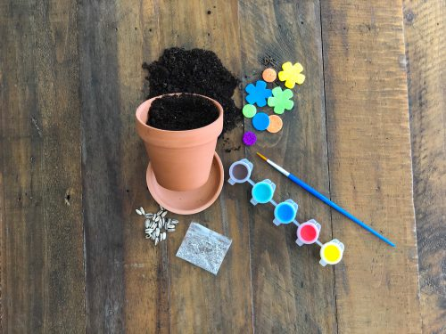 FLOWER POT COLORING INCLUDING SOIL AND SEEDS